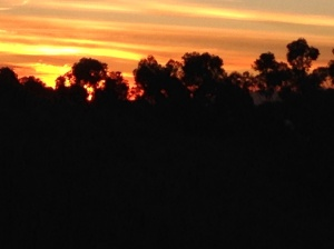 A painted sunset, 1 May 2014